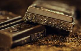 Festival do Cacau e Chocolate: inscrições abertas para atividades