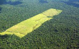 Projeto de lei quer afrouxar licenciamento ambiental no Brasil