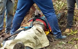Trator cai de ribanceira de 150 m de altura e operador fratura somente uma perna