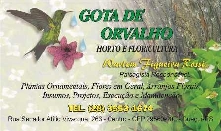 Floricultura Gota de Orvalho