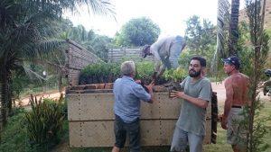 O Incaper fomentou, neste ano, o plantio de mais de 8 mil mudas de espécies nativas